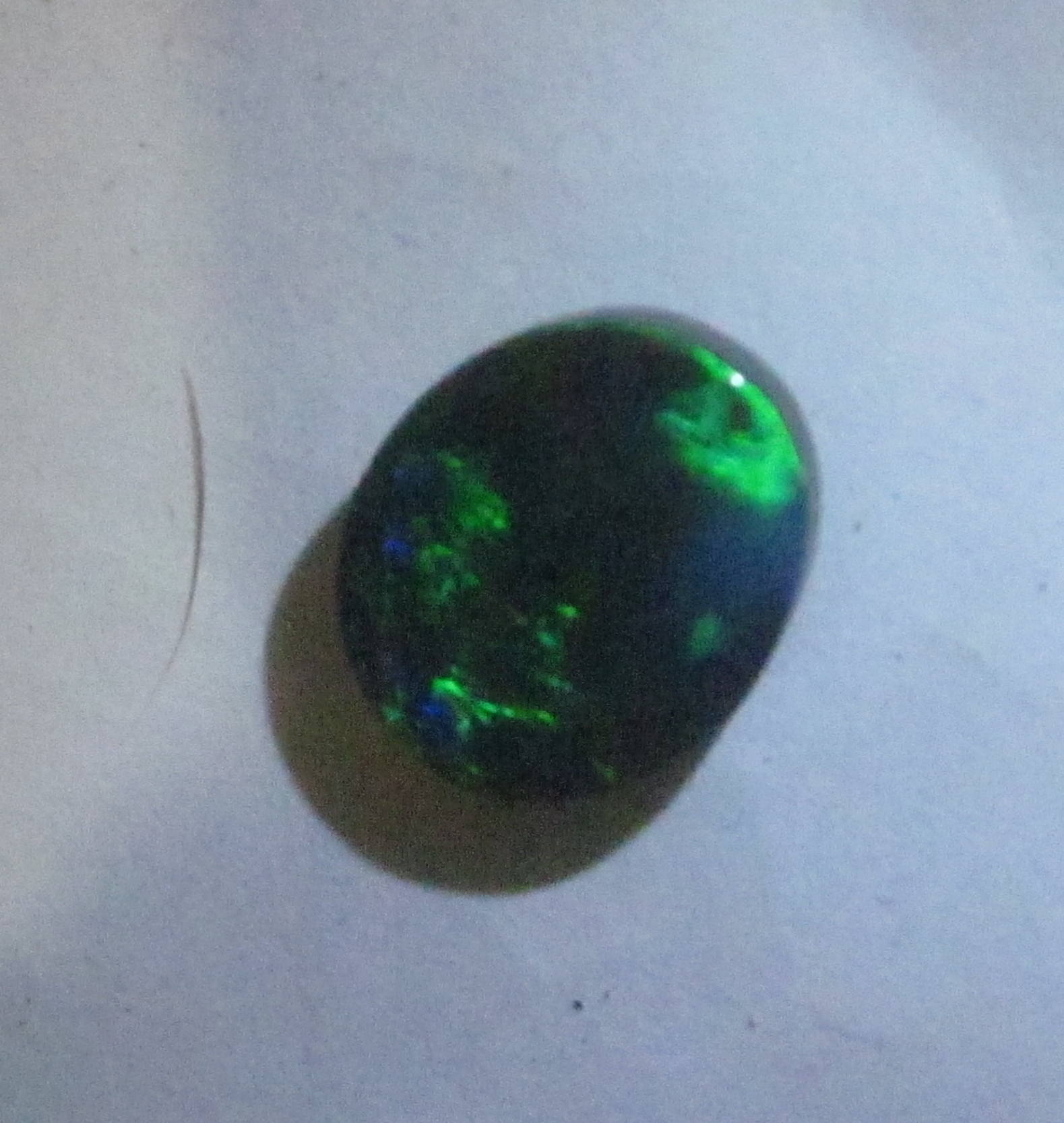 opal for sale,opals for sale,black opals for sale, australian opals for sale