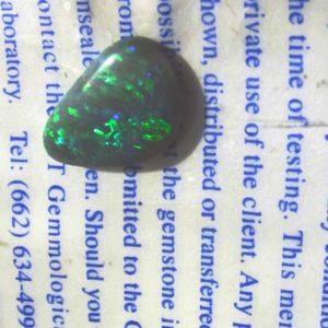 black opals,black opal, black opals semi