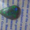 black opals,black opal,black opals semi