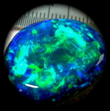 black opals,black opal