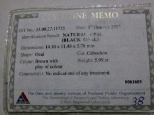 opal lab results